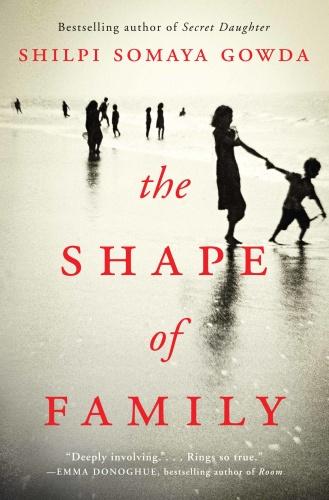 The Shape of Family A Novel