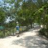 Hiking Tin Shui Wai - 頁 14 084AV1Vm_t