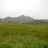 Hiking Tin Shui Wai - 頁 14 XtQsj5Iq_t