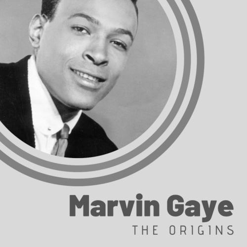 Marvin Gaye   The Origins of Marvin Gaye (2019)