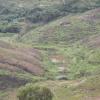Hiking Tin Shui Wai - 頁 14 PPWR4I2c_t